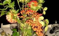 berries-vines