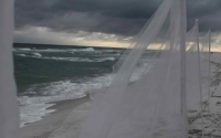 billowing-beach-wedding_0
