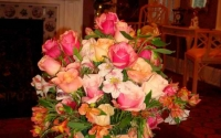 colorful-organic-roses