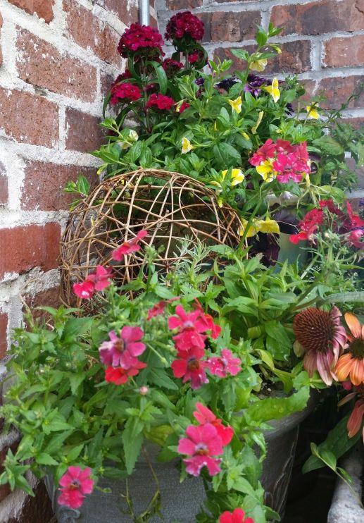 Garden Terrace Spring Flowers
